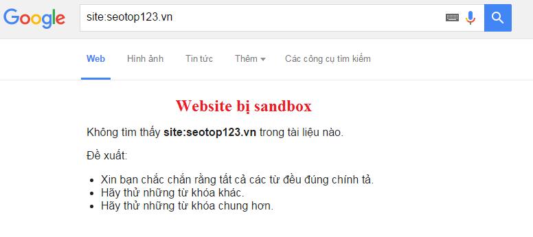 Website bị Sand Box